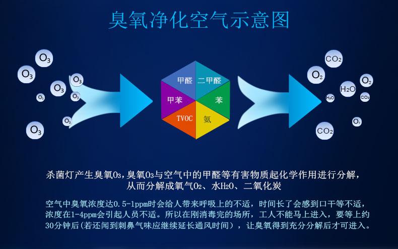 UV光催化离子氧化净化设备3.png